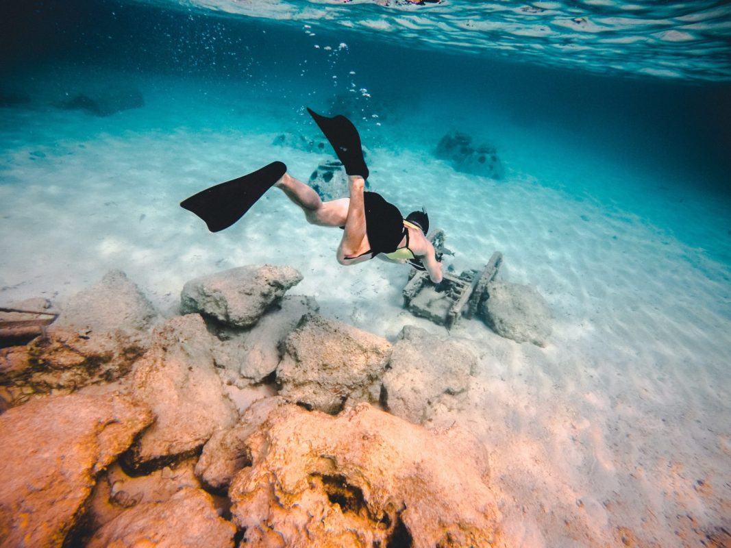 best-snorkeling-fin-reviews