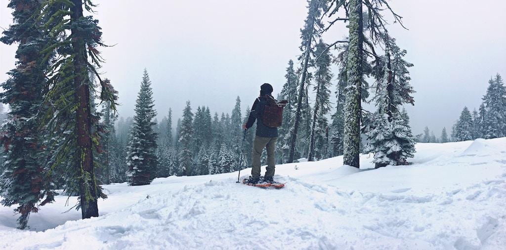 softshell-pants-for-hiking