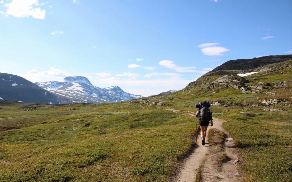 Osprey vs Gregory Trekking Backpack