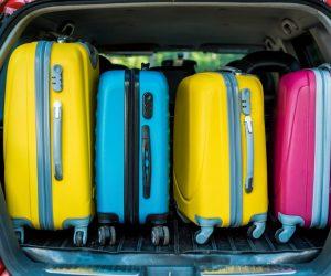 Mia Toro Luggage Review