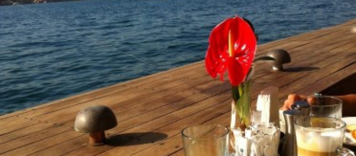 Enjoying the view at breakfast at the Radisson Blu Bosphorus in Istanbul